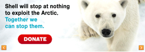 Greenpeace ask for donations to protect the Arctic from Shell...